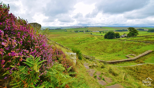 Hiking UK - a day hike at Hadrian's Wall from The Sill, Northumberland UK