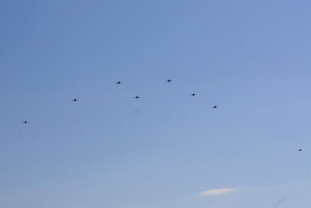第1航空団 第31教育飛行隊 T-4による大編隊飛行 IMG_4111_2