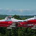 Snowbirds take flight by Circa MCMLX