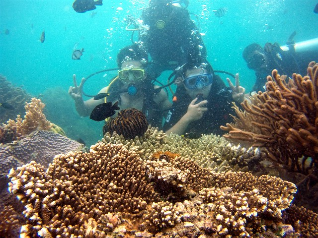 Private-Nha-Trang-Diving-Tour