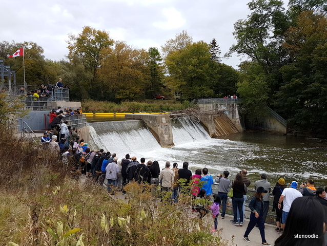 Port Hope Fish Ladder