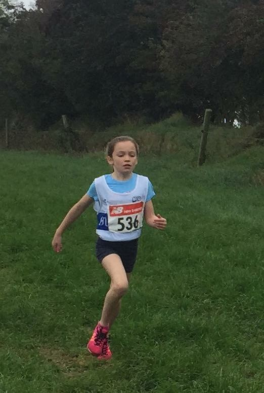 Meath XC Masters & Juvenile Uneven Ages 2017