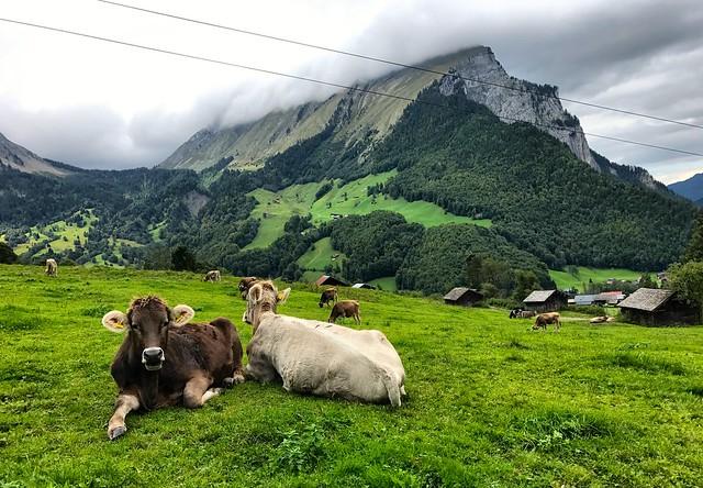Vorarlberg, Austria 2017 1