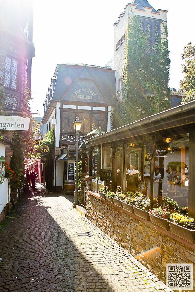 萊茵河 斑鳩小鎮 (Drosselgasse)