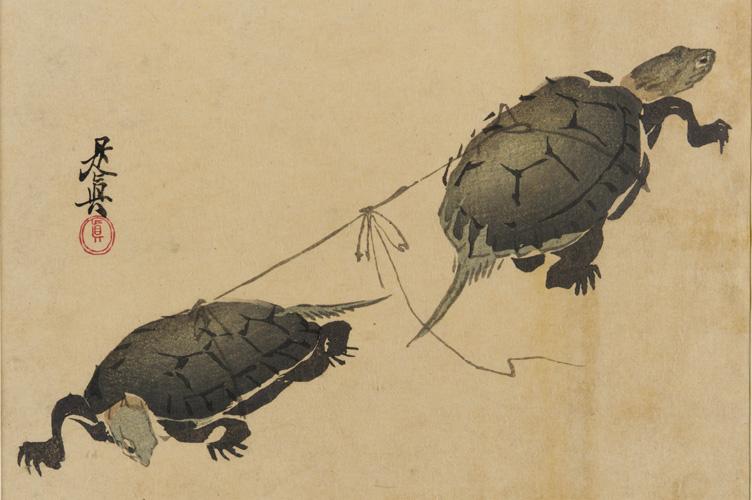 Two turtles Shibata Zeshin