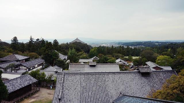 奈良 : 二月堂、东大寺、兴福寺、COJICA