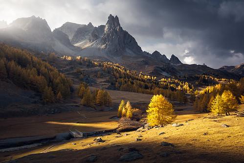 The Golden Valley por Aurélien BERNARD