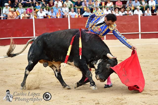 Corrida de toros 19