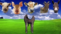 Farm Animals with Wrong Heads | Learn Farm Animals Funny Video for Children | Kids Nursery Rhymes
