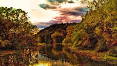 sky, trees, river