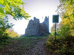 Les ruine du Château de Montsalvens
