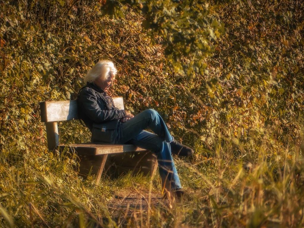 L'automne d'une vie... 23854600338_b2a00849d8_b