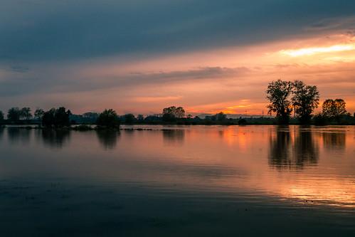 sava river rijekasava savariver domovinskimost thehomelandbridge sunset sunrise trees clouds izlazaksunca zalazaksunca oblaci sunce voda water zagreb croatia