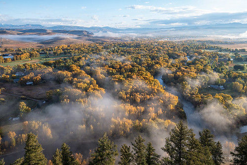 hartmanrocks mattburtphoto cloud fallcolor fog gunnison mist morning river southwest sunrise trees yellow