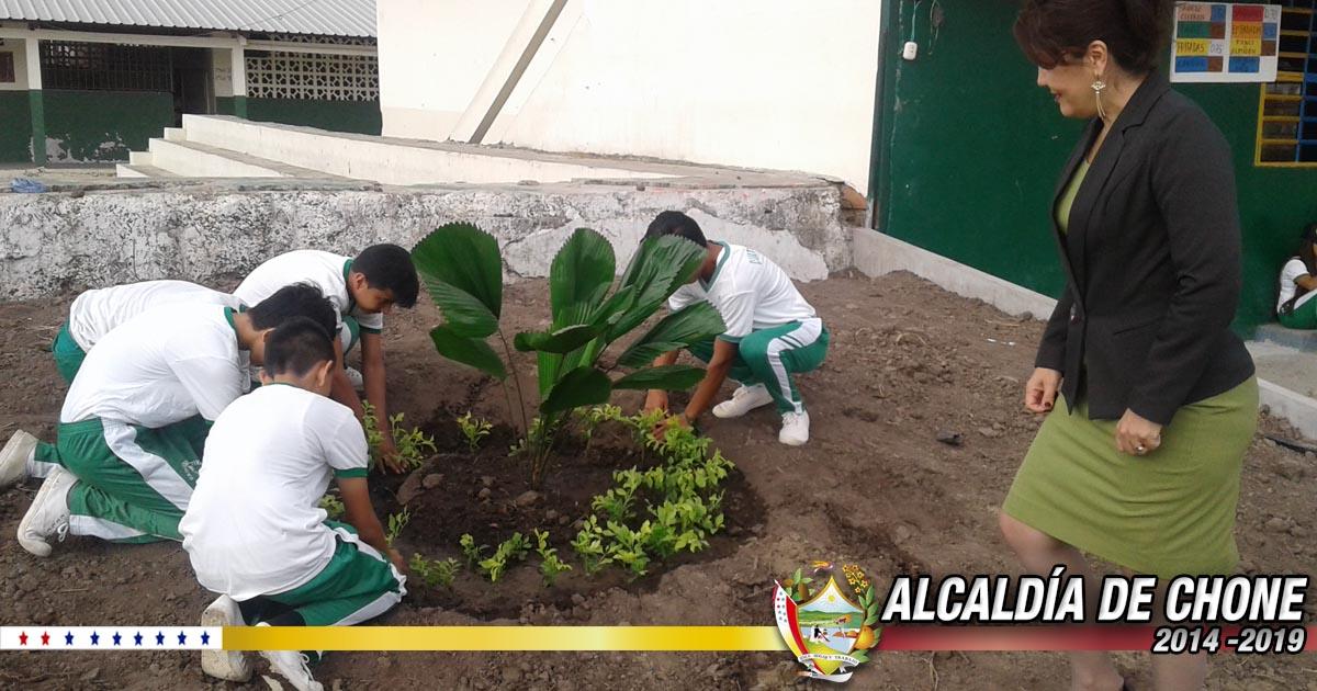 Alcaldía de Chone y UE Amazonas continúan sembrando plantas