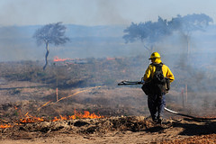 Army Prescribed Burn on Fort Ord