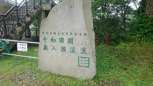 十和田湖についた。展望台へlet's go