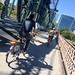 bike commute on the hawthorne bridge
