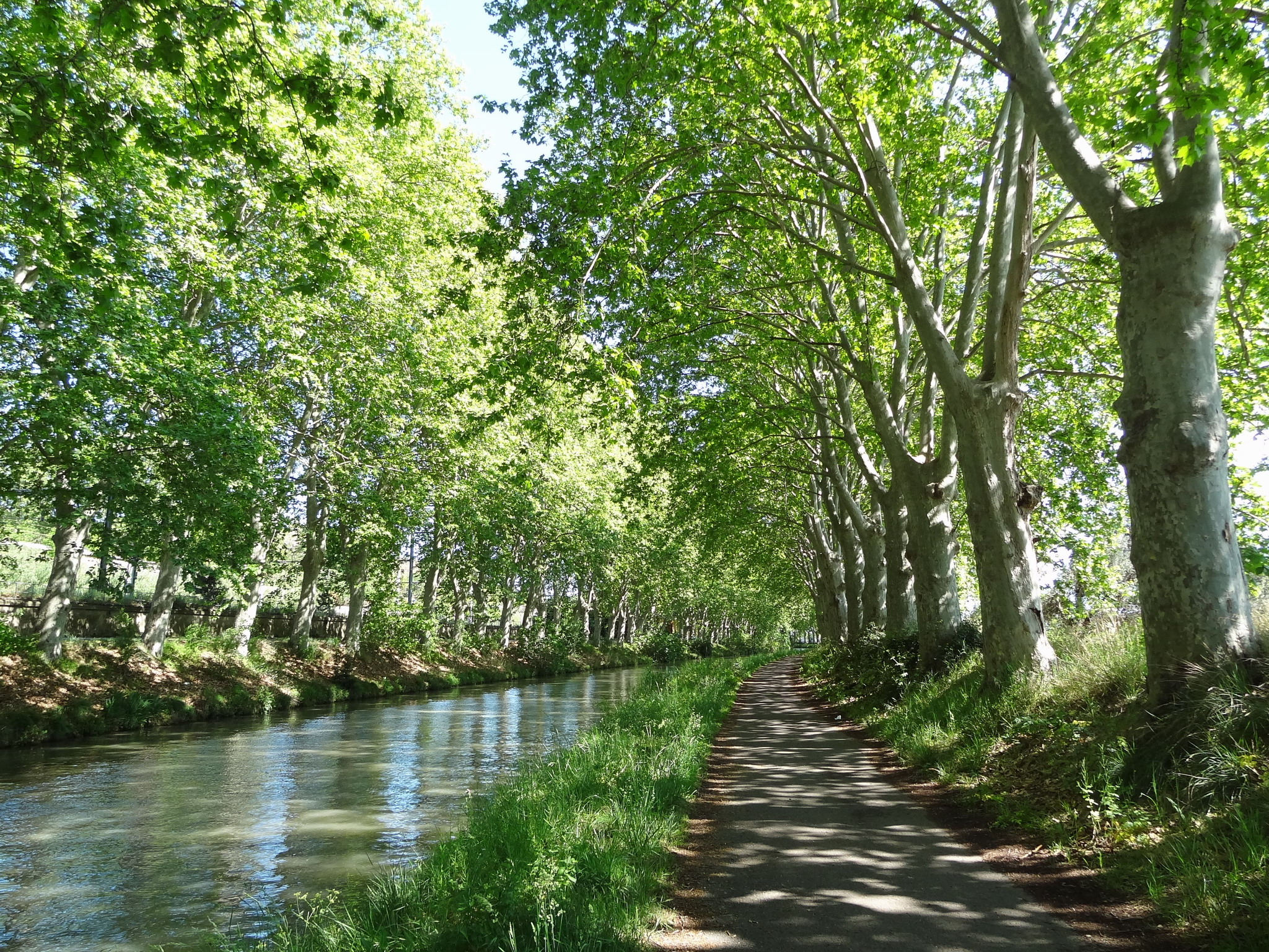 Vers la Méditerranée à vélo