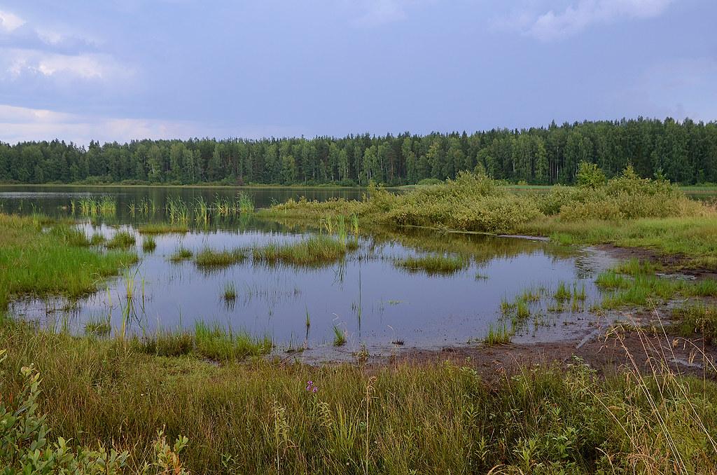 50_Russia_Arkhangelsk Region_Soozerskoye Lake