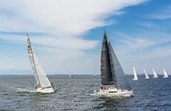 Racing in Izmir Gulf