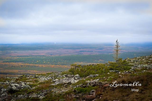 landscape_levi