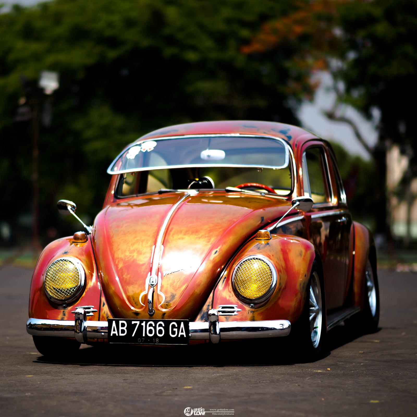 Tole-VW-Beetle
