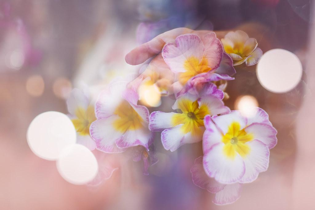 Pocítiť jar