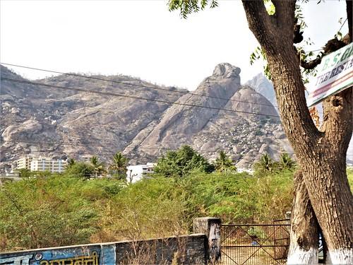 i-jodhpur-mount abu-route  (42)