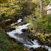 Rydal Beck Waterfall  12