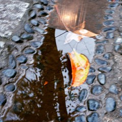 After the rain. #puddle #streetscape #rainstagram #rain #tokyo