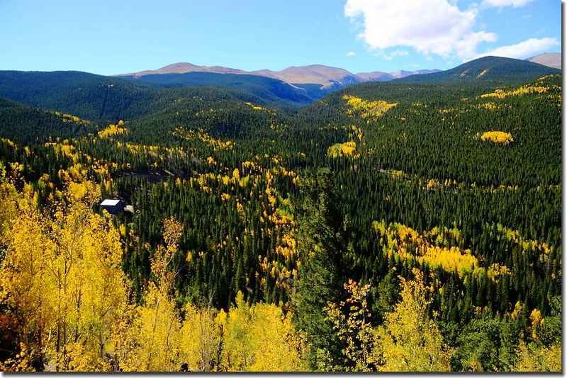 Fall colors, Mount Evans Scenic Byway, Colorado (30)