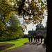 Botanic Gardens Edinburgh Oct 2017 -53