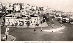 Brighton - Aquarium and Marine Parade