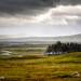 Rannoch Moor by rnrobson