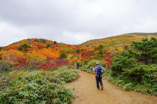 これから向かう山肌の紅葉がすごい