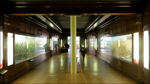 THE TED ELLIS NORFOLK ROOM