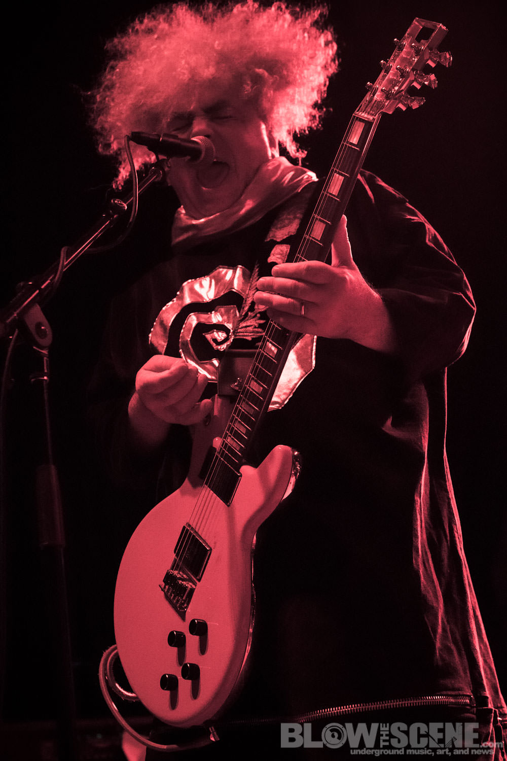 the Melvins016
