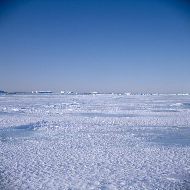 Antarctica91_66_2.jpg
