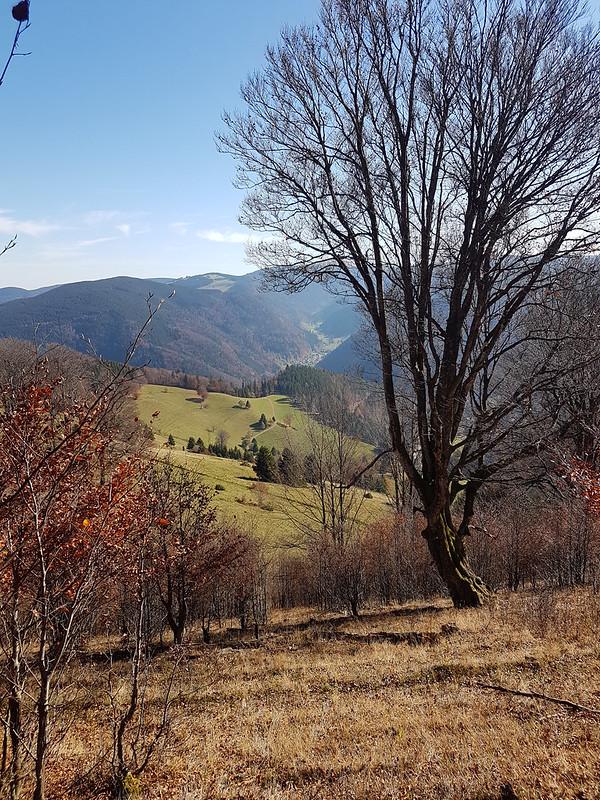 Wanderung um den Schauinsland