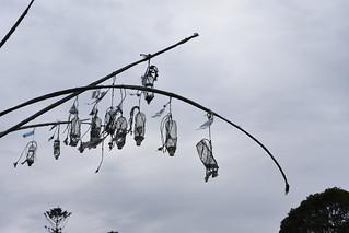 Public art - Living smart installations (3)