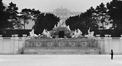 Winter at Schoenbrunn Palace Gardens