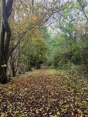 Early autumn walk - Leighton Buzzard to Aylesbury