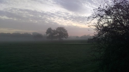 Foggy Morning in Earlswood