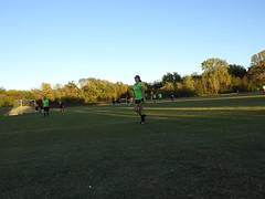 Otter Soccer