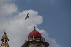 India-Mysore-GK-72165_20150106_GK.jpg