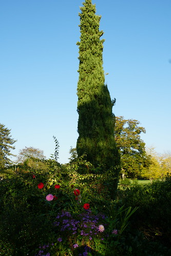 Château du Pin landscaping
