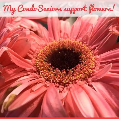 My CondoSeniors support flowers