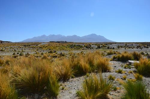 Blick über den Altiplano auf Berg einer Kordillere.