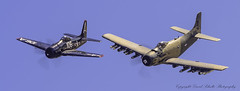 Grumman F8F-2 Bearcat N800H 1952 Douglas AD-4N Skyraider